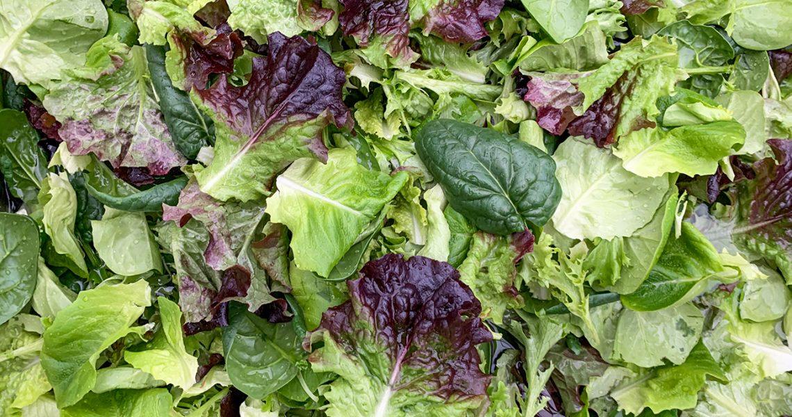 Hof-Salat